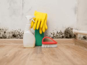 湿度が高いと危険!気になるカビ対策や掃除のポイント