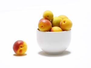 梅のすばらしい効果・効能 疲れが取れて美容にもよい梅を食べて夏バテ予防!